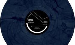 ETUILTD004 Inesct O. - Bondi Dub